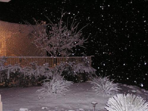snow storm Patey